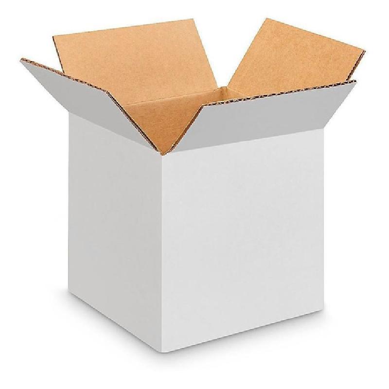 ISICLEAN - Caja de carton blanca